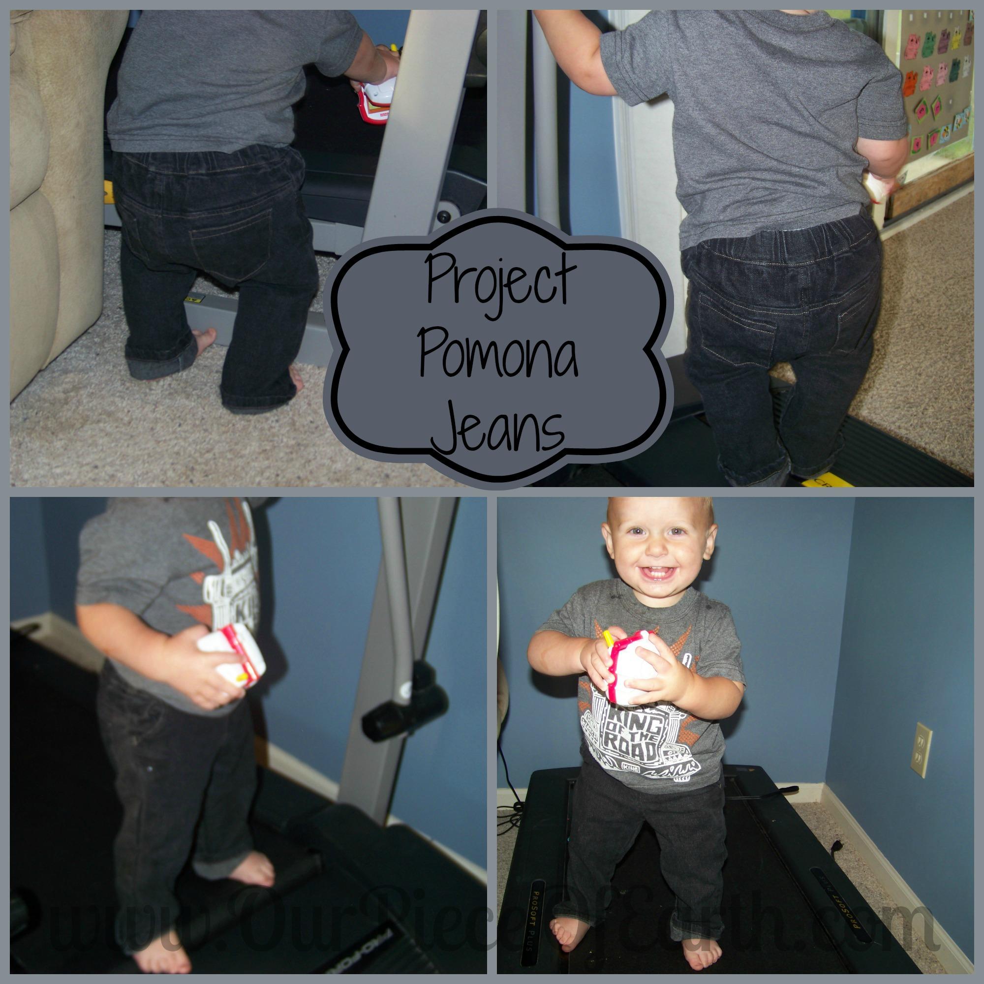 Project Pomona Jeans