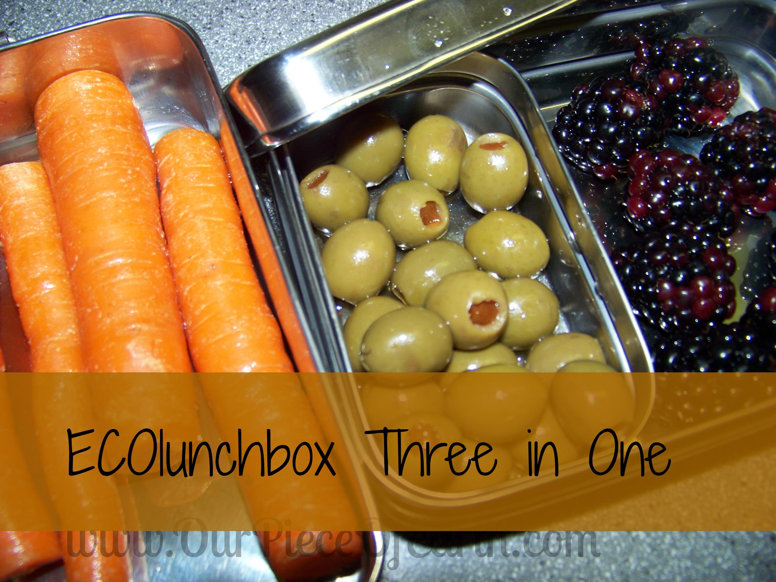 ECOlunchbox 3 in 1