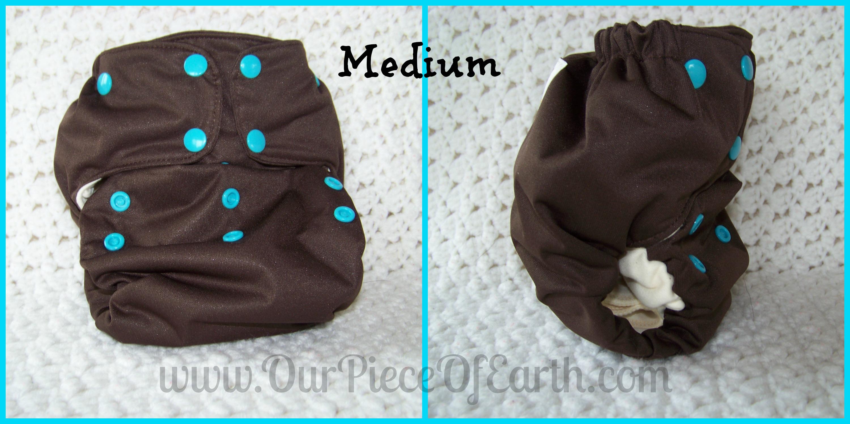 Smart Bottoms Smart One 3.0 Cloth Diaper