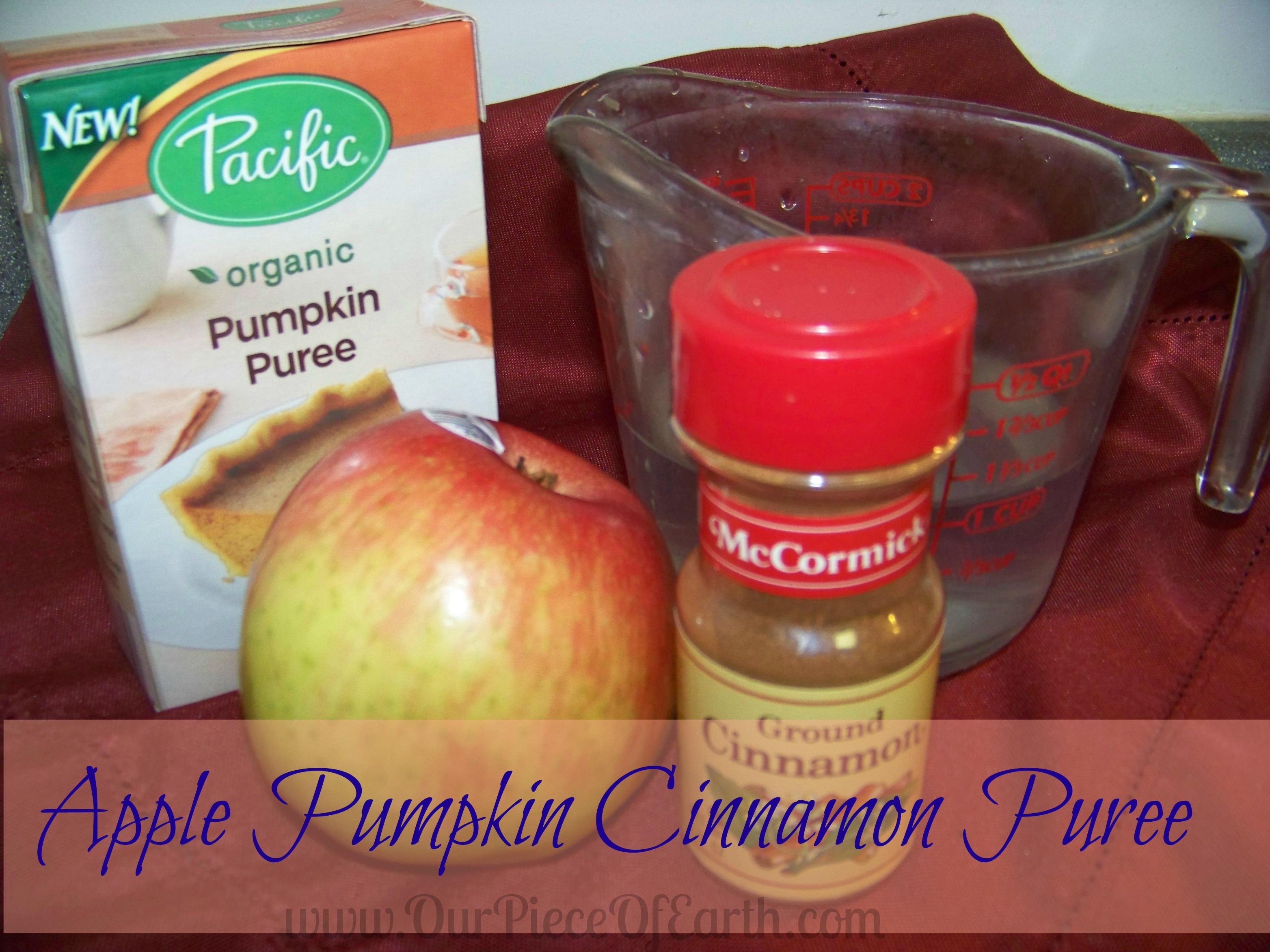 Apple Pumpkin Cinnamon Puree, Yummi Pouch