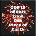 2014 Top Ten Posts
