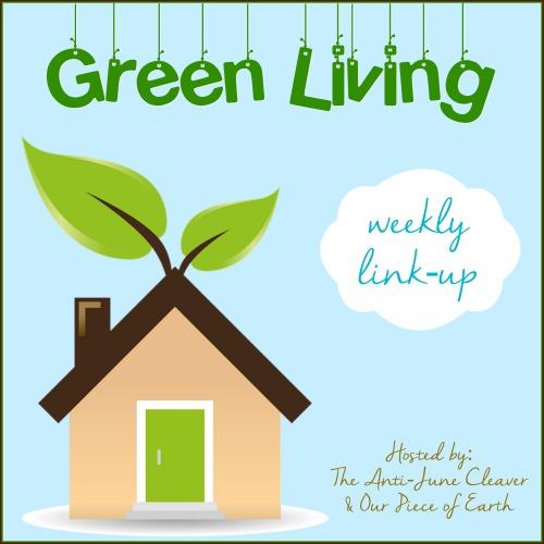 green-living-link-up-sm-4